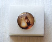 Pin brooch Pear photo glass tile button bronze gold winter shawl warm fruit jewelry WA street team