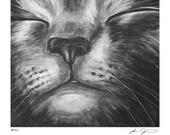 Russian Blue Gray Cat Print - Bliss