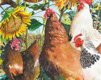 "Chickens Rooster Sunflowers Art ""Sunflower Chickens"" Prints Signed and Numbered"