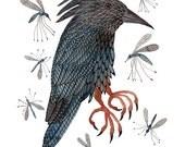 Kingfisher und fliegen Vogel zu drucken, indem Gott bard