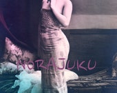 Vintage Risque Glamour Prints German Photos Asta Westerguard 1900s