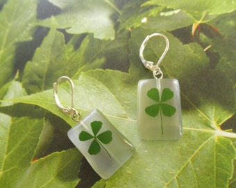 Real 4 Leaf Clover Rectangle White Cat's Eye Rectangle Leverback Earrings-Gifts Under 30-Nature's Art-Symbolizes Luck, Hope, Faith, Love