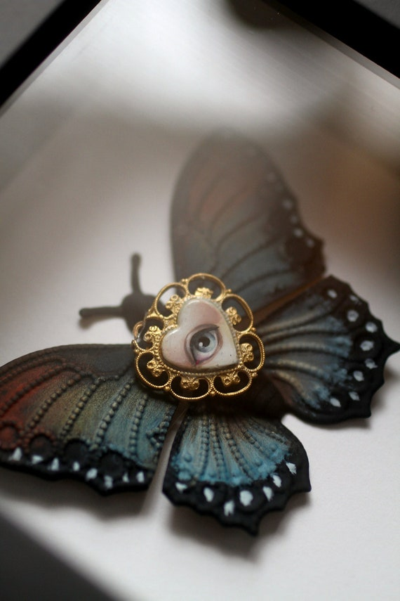 Cabinet of Curiosities Specimen no. 31 - The Lover's Moth Eye Fly - original 3D insect painting by Mab Graves