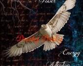 Spirit of the Hawk - Digital Collage Print - 11x14