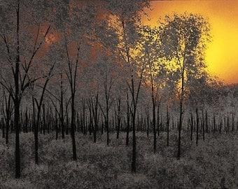 Landscape Painting, Landscape Art, Landscape Print, Sunset Painting, Tree Painting, Nature Painting, Nature Print, Nature wall art, Trees