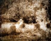 Cemetery - Graveyard - Headstones - Tombstones - Halloween - 8 x 10 Fine Art Print