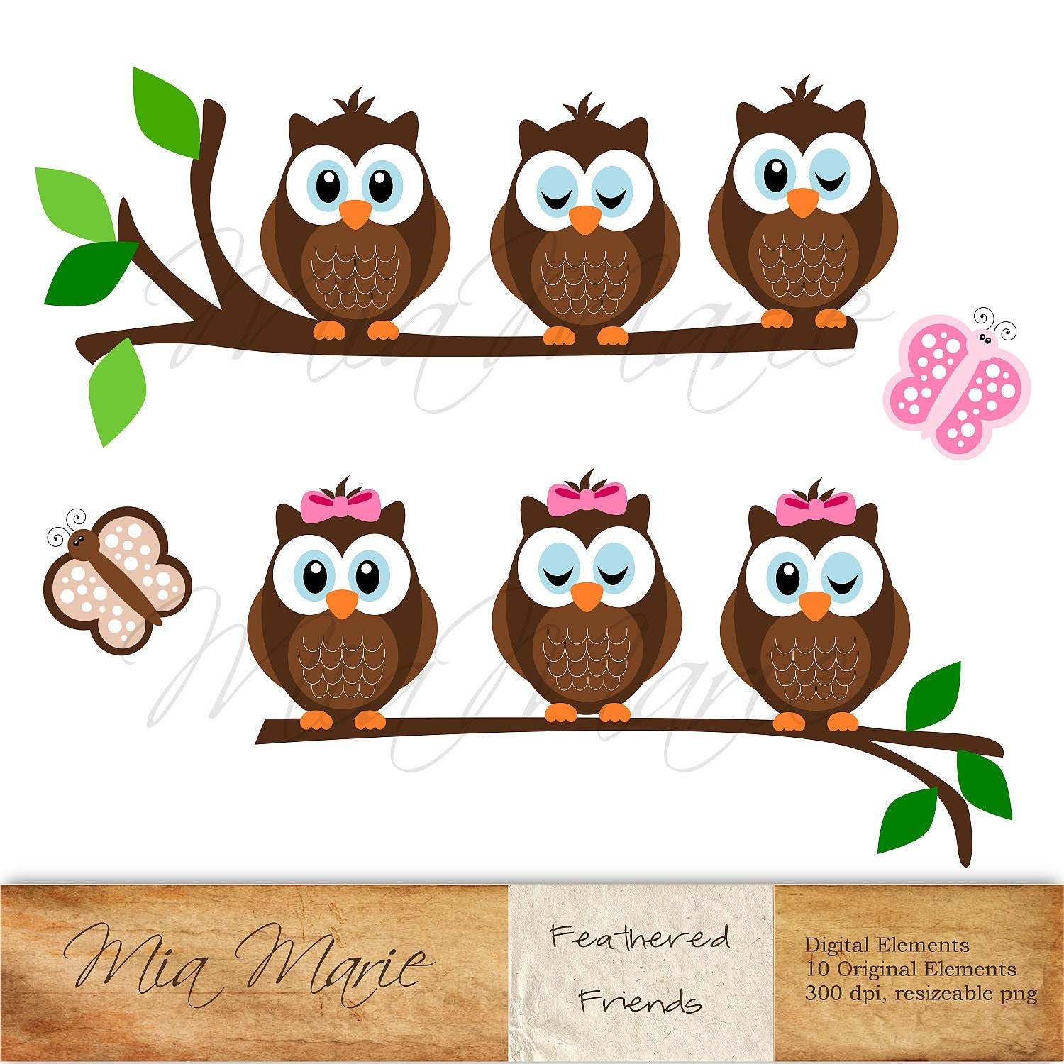 Instant download digital clip art owl clipart owl clip Drawing images free download