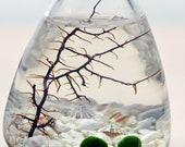 Marimo Terrarium - Rolling Vase - Japanese Moss Ball aquarium - White - Desk Accessory - Green Gift