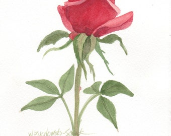 Red Rose Original Watercolor Painting