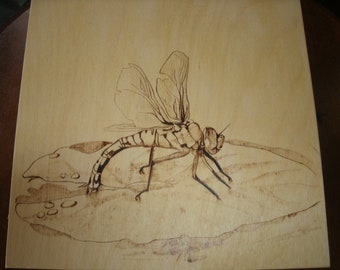 Woodburned Dragonfly on lillypad, detailed pyrography wall plaque, wood burning natural tones
