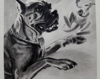 1940s Vintage BOXER Dog Print or SEALYHAM Dog Print Vintage Dog Gallery Wall Art Morgan Dennis Art Print 28
