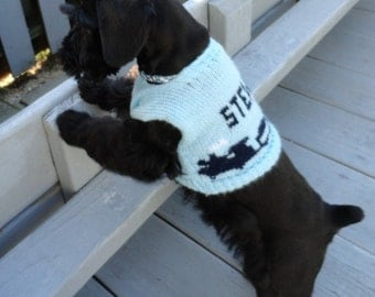 Personalized Dog Sweater X-Small Fits 5 to 9 lbs.