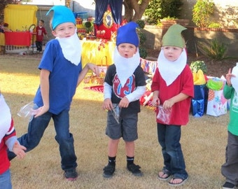 Seven Dwarfs HATS and BEARDS - Seven Dwarfs costumes - Snow White Party - Disney Princess Birthday Party - snow white seven dwarf hats