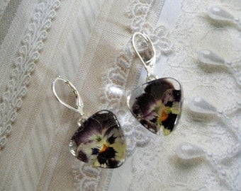 Deep Purple, White & Yellow Pansy Pressed Flower Glass Triangle Leverback Earrings-Symbolizes Loyalty-Nature's Wearable Art-Gifts Under 25