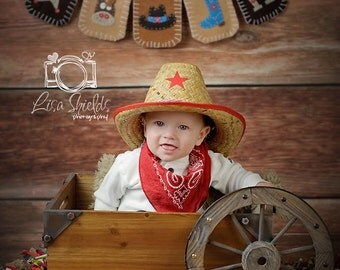 Cowboy Bunting. Western Nursery Art. Baby Shower. Felt. Eco-Friendly. Reusable. Photo prop. Made to order item.