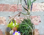 Flower and Air Plant Moss Terrarium with charm - A unique birthday or Valentines Day gift