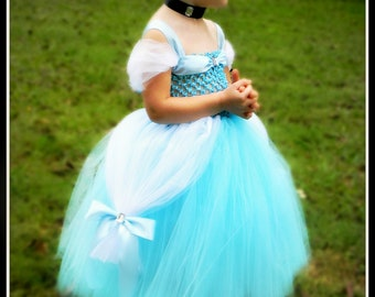 Cinderella Inspired Disney Princess Tutu Dress