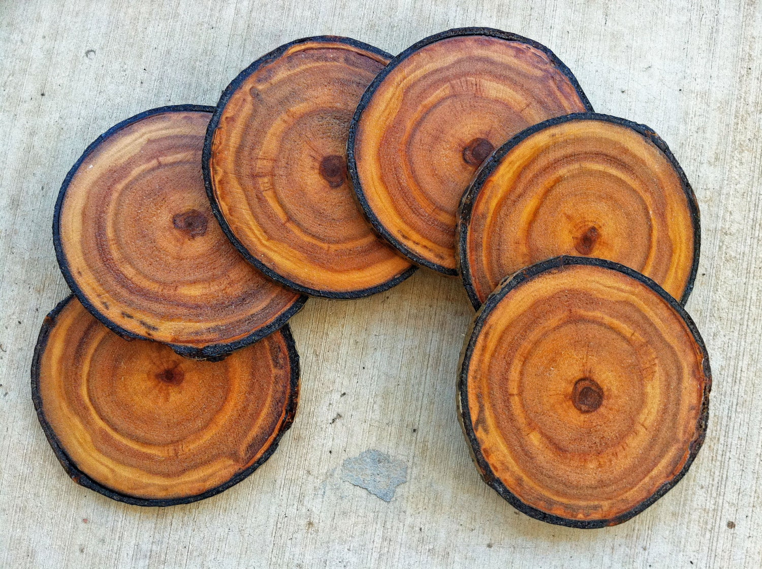 Coasters Colorado Aspen Wood Coaster Set Of 6