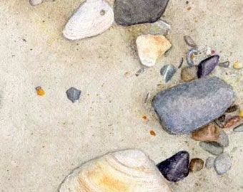 Clam Shells & Stones Matted Print - Beach Decor
