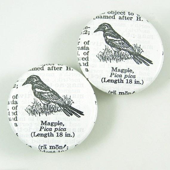 Magpie Bird Magnets