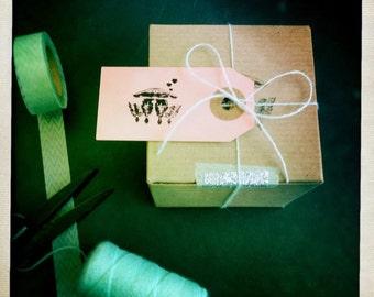 air plant // gift wrap