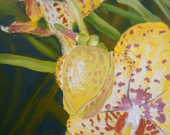 Original Oil Painting on Canvas, Orchid series No 4, botanical garden art, colorful art