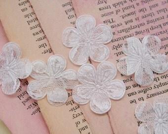 White Lace Blossoms