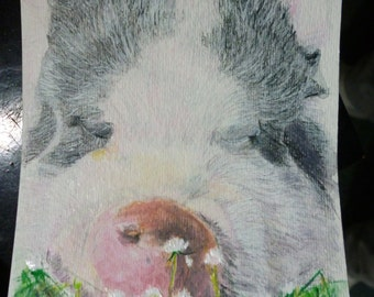 Pet Portrait Original Pig n Meadow Watercolor Painting 4 x 6 inch You Provide The Picture or Idea Made to Order by Pigatopia