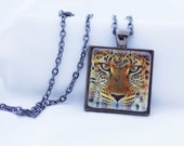 Leopard Necklace, Gunmetal Black, Fine Art Print, Photo Jewelry, Big Cat Necklace