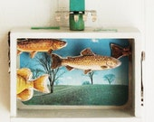 RESERVED - Mixed Media Assemblage - Fishing - Zen of Fly Fishing - Flying Fish - Original One of a Kind Shadow Box - Office Decor
