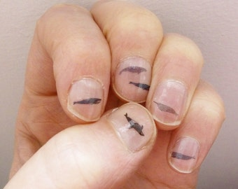whale nail transfers - illustrated nail art decals - orca , narwhal , blue whale - nail stickers