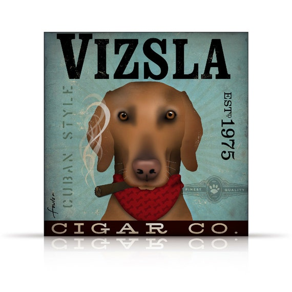 Vizsla Cigar company illustration artwork on gallery wrapped canvas by stephen fowler