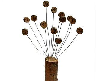 Willow Alphabet Back To School Educational Eco-friendly Rustic Bonsai Salix matsudana by Tanja Sova