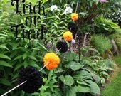 Trick or Treat - Yarn Pom Pom Garland