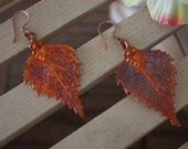 Medium Leaf Earrings, Real Birch Leaf Pendant Size Copper Earrings, Copper earrings, Birch, LEP25