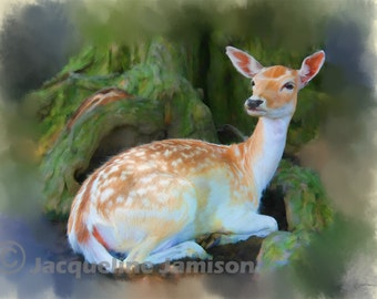 Original Art, ACEO, Deer, Protected