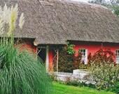 Enchanted Rose Cottage Ireland Photography Fine Art Photo Thatched Cottage 5 x 7 Architecture Photo Old Ireland Irish Cottage