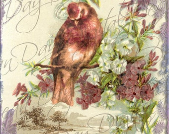 French Bird with Ocean Flowers Collage maroon, Instant Download, French Postcard FrA126
