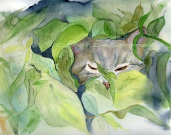 Watercolor Painting Cat Art, Cat Painting, Cat Watercolor, Cat Portrait, Pet Art, Cat Art Print Titled Tiger in the Wild