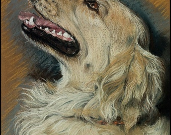 Golden Retriever 5 1/4x 5 1/4 blank card