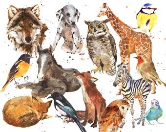 Any MEGA EXTRA LARGE Print - 13x19 inches of your choice, animal art, large animal prints