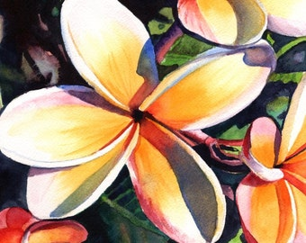 plumeria art prints, 8x10 giclee, plumeria artwork, paintings of plumeria, kauai artist, hawaiian art galleries, kauai painters, oahu maui