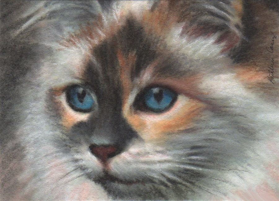 Calico Cat Pastel Painting With Blue Eyes Aceo