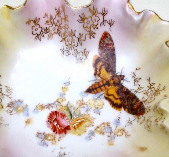 Altered Antique Plate - Victorian Deathshead Skull Moth Halloween
