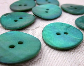10 Medium Turquoise Shell Buttons