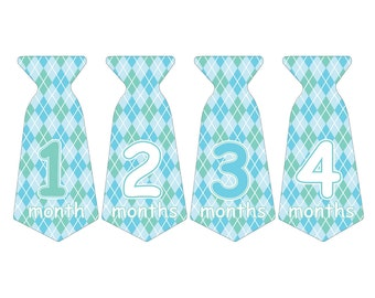 12 Pre-cut Monthly Baby Waterproof Glossy Stickers - Neck Tie Shape - Design T004-07