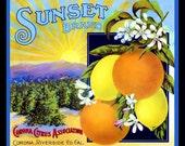 Sunset Brand Corona Riverside Orange label Refrigerator Magnet