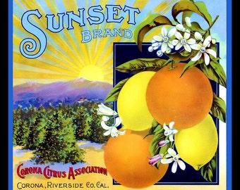 Sunset Brand Corona Riverside Orange label Refrigerator Magnet