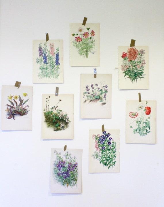 Small Vintage Botanical Flower Print