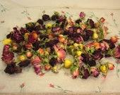 Freshly dried spray roses